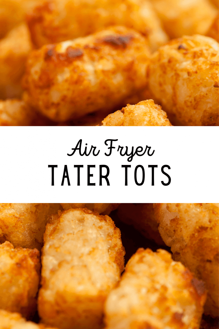 Air Fryer Tater Tots
