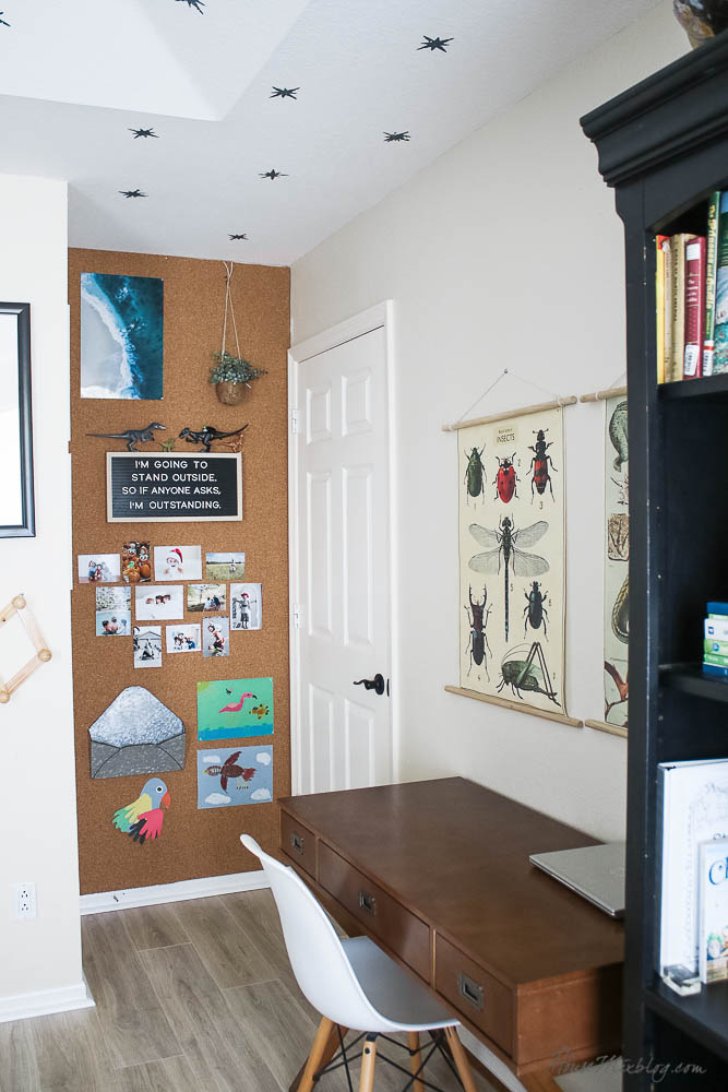Corkboard Wall